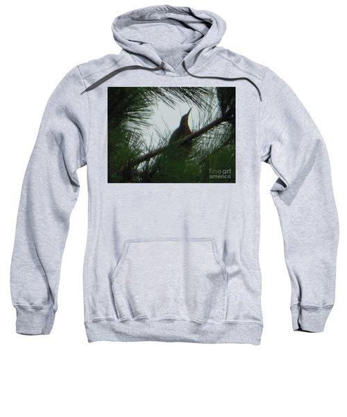 American Bitten Bird Sweatshirt