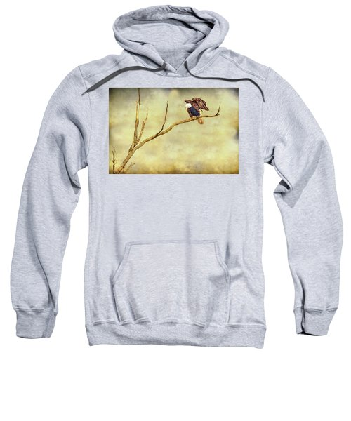 Sweatshirt featuring the photograph American Freedom by James BO Insogna