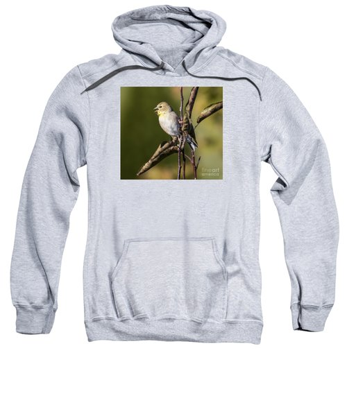 Sweatshirt featuring the photograph American Goldfinch In Fall Colors  by Ricky L Jones