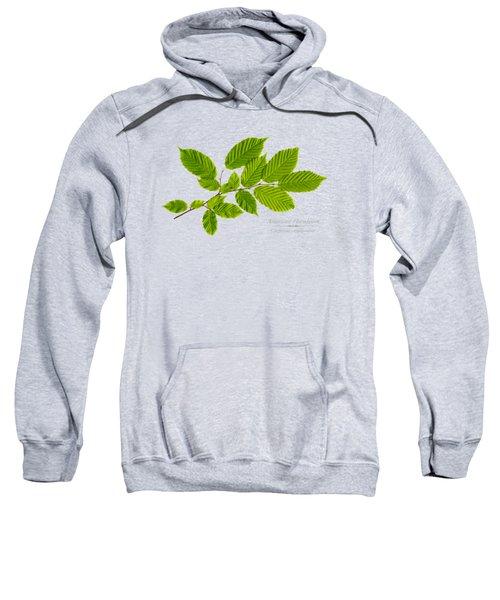 American Hornbeam Sweatshirt