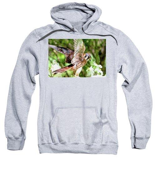 American Kestrel Hawk Sweatshirt