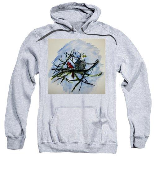 American Picture Sweatshirt