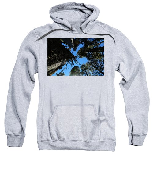 Among Giants Sweatshirt