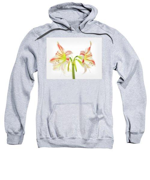 Amorice Sweatshirt