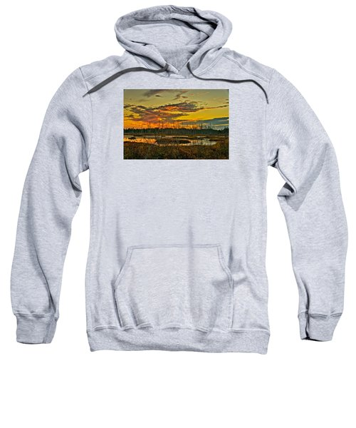 An November Sunset In The Pines Sweatshirt