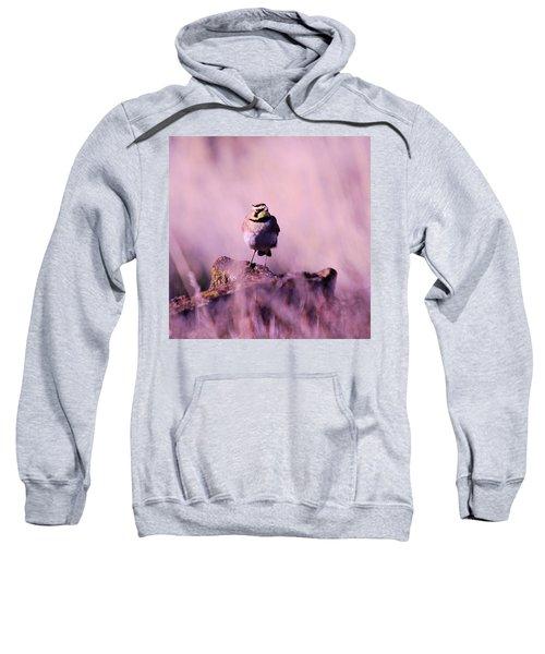 An Searching Gaze  Sweatshirt by Jeff Swan