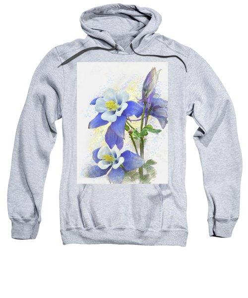 Ancolie Sweatshirt