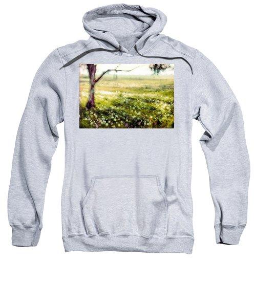 Anemones In Megiddo 2 Sweatshirt