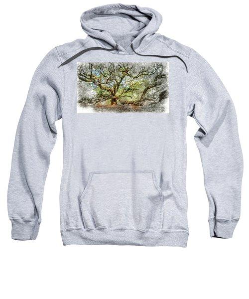 Angel Oak Mixed Media Sweatshirt