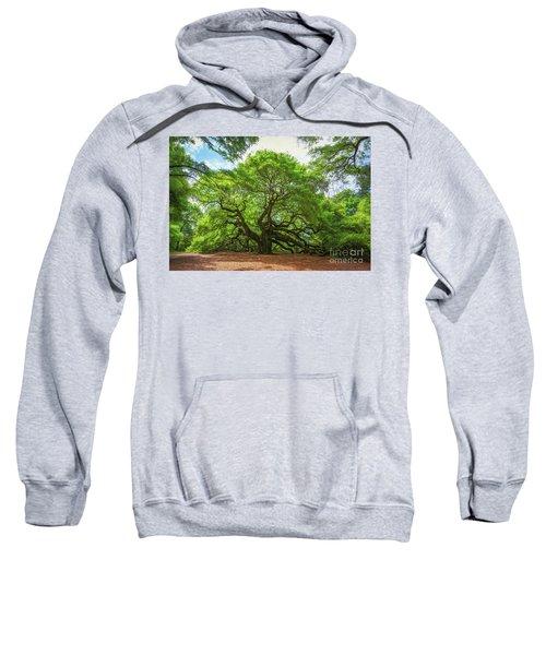 Angel Oak Tree In South Carolina  Sweatshirt