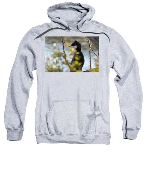 Anhinga 3 March 2018 Sweatshirt