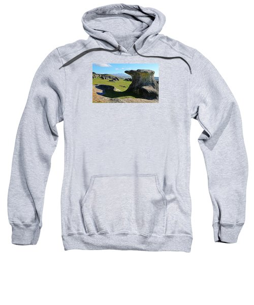 Anvil Rock Sweatshirt by Nareeta Martin