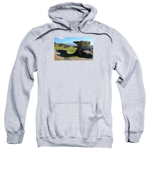 Anvil Rock Sweatshirt