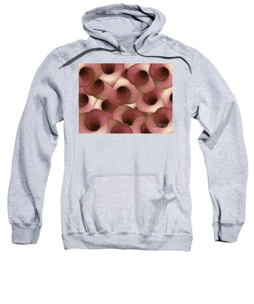 Apple Blossom Petals Sweatshirt