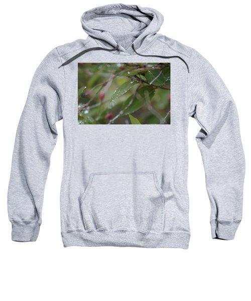 April Showers 1 Sweatshirt