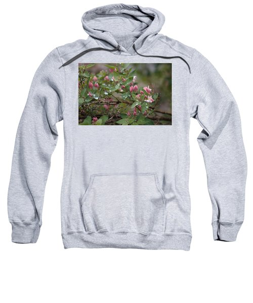 April Showers 6 Sweatshirt