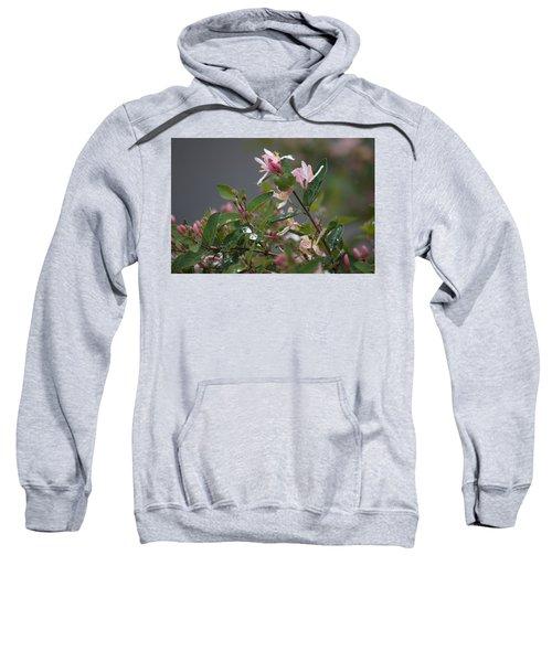 April Showers 7 Sweatshirt