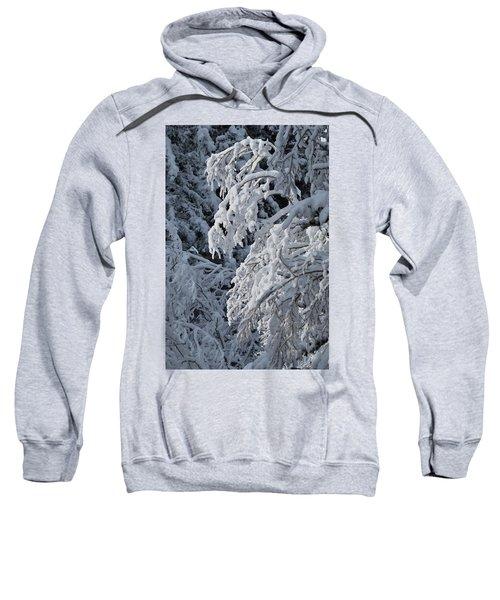 April Snow Sweatshirt