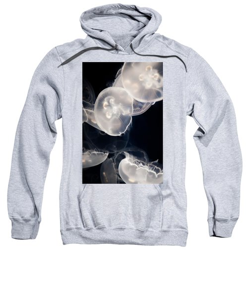 Aquarium Of The Pacific Jumping Jellies Sweatshirt