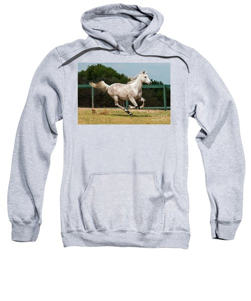 Arabian Horse Running Sweatshirt