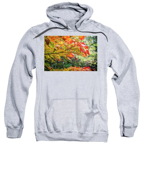 Sweatshirt featuring the photograph Arboretum Autumn Leaves by Peter Simmons