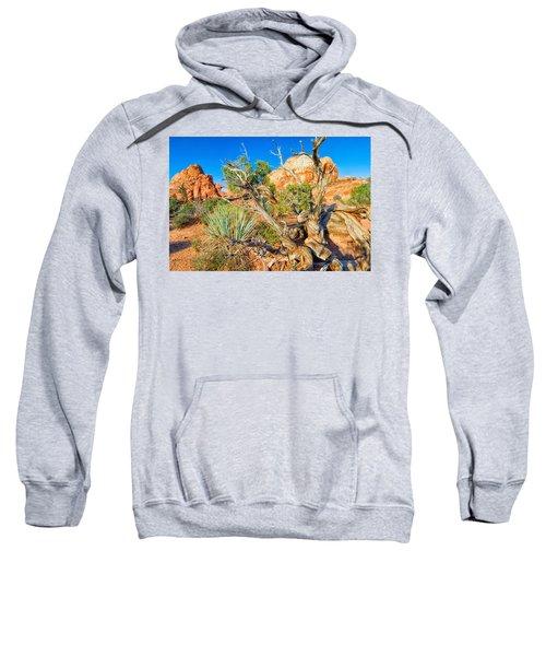 Arch Sweatshirt