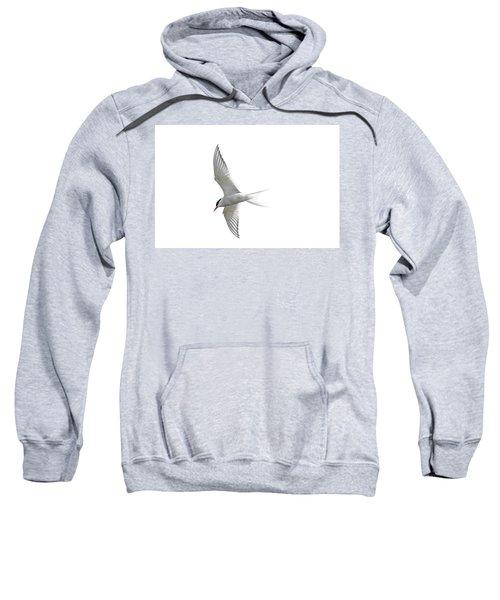 Arctic Tern Flying In Mist Sweatshirt