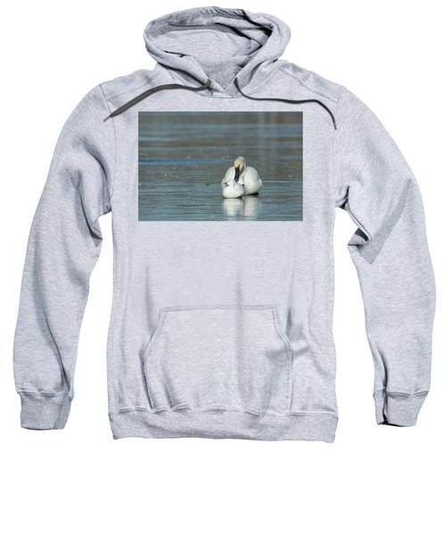 Are You My Mommy? Sweatshirt