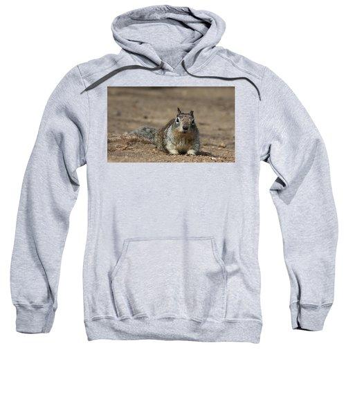 Army Crawl - 2 Sweatshirt