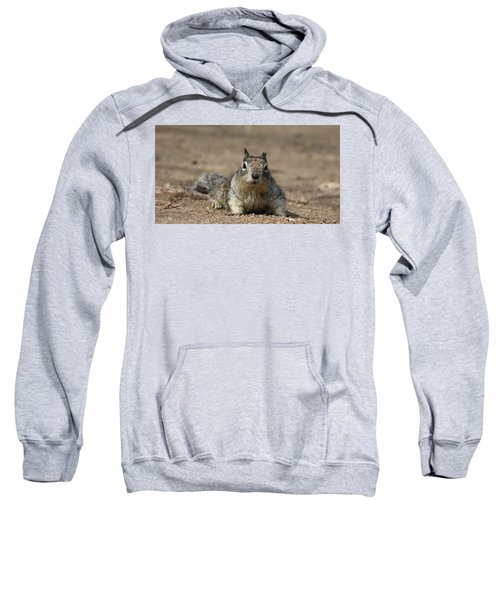 Army Crawl  Sweatshirt