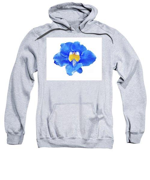 Art Blue Beauty Sweatshirt