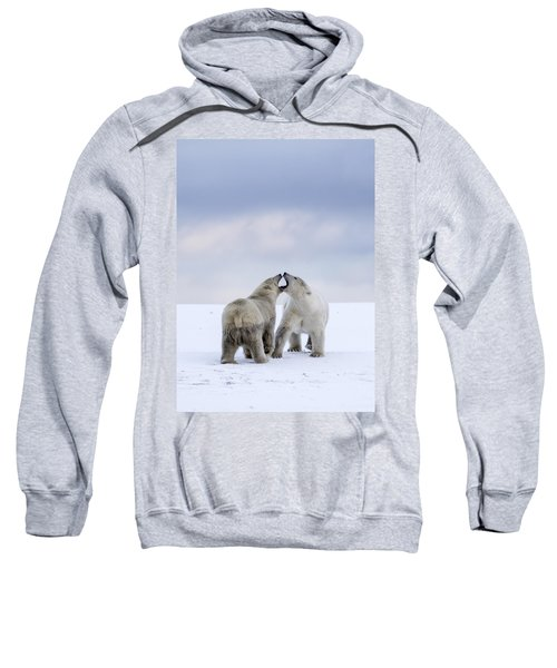 Artic Antics Sweatshirt