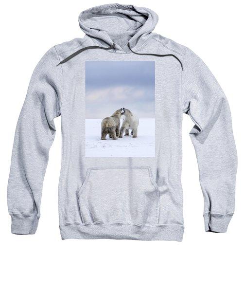 Artic Antics Sweatshirt