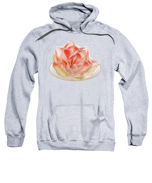Double Pink Amaryllis Sweatshirt
