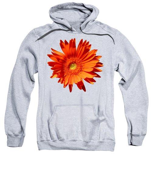 Orange Delight Sweatshirt
