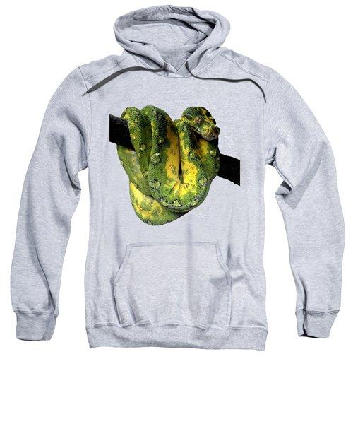 Green Tree Python 2 Sweatshirt