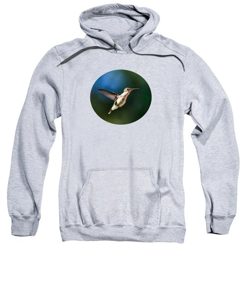 Ruby-throated Hummingbird And Pink Verbena Sweatshirt by Christina Rollo