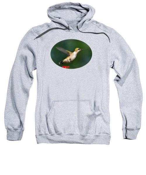 Summer Hummingbird Sweatshirt by Christina Rollo