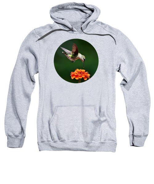 Hummingbird Bullseye Sweatshirt by Christina Rollo