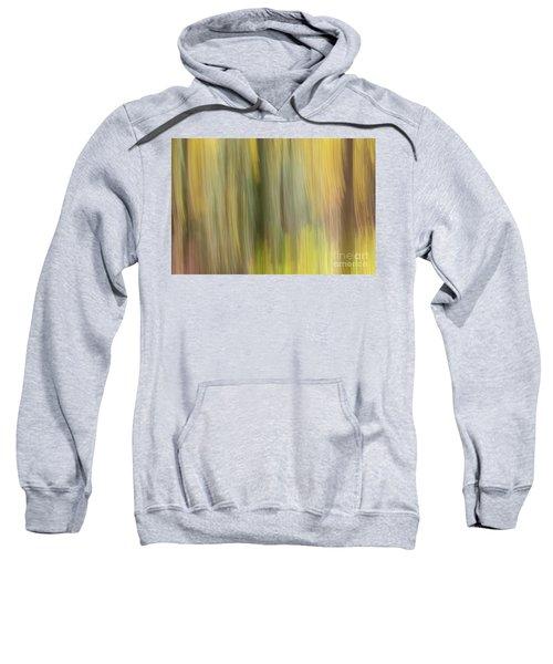 Aspen Blur #2 Sweatshirt