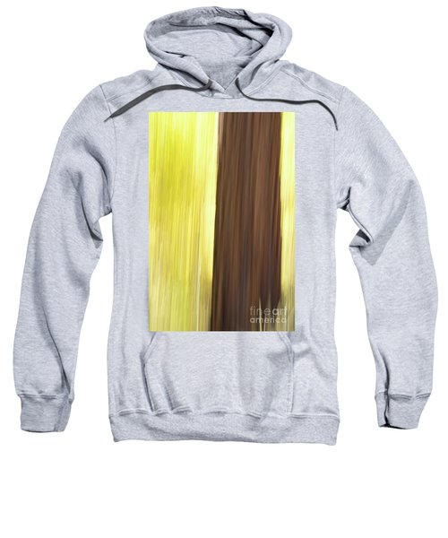 Aspen Blur #4 Sweatshirt
