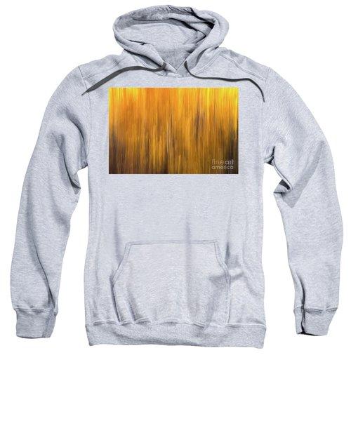 Aspen Blur #5 Sweatshirt