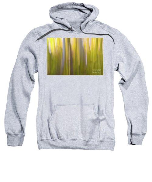 Aspen Blur #6 Sweatshirt
