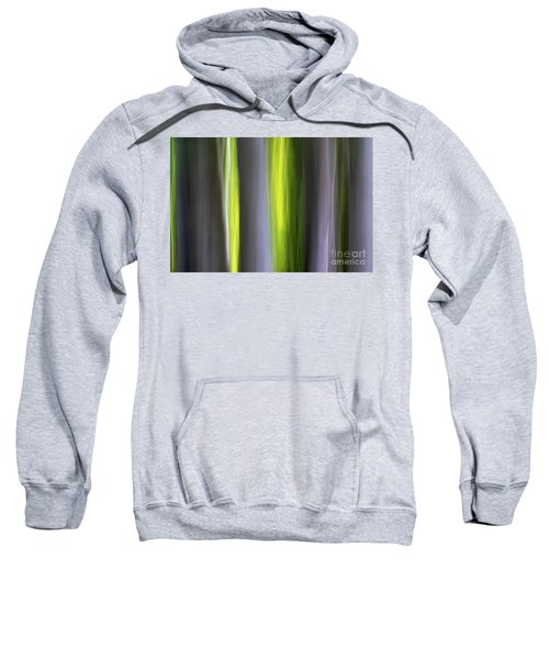 Aspen Blur #7 Sweatshirt