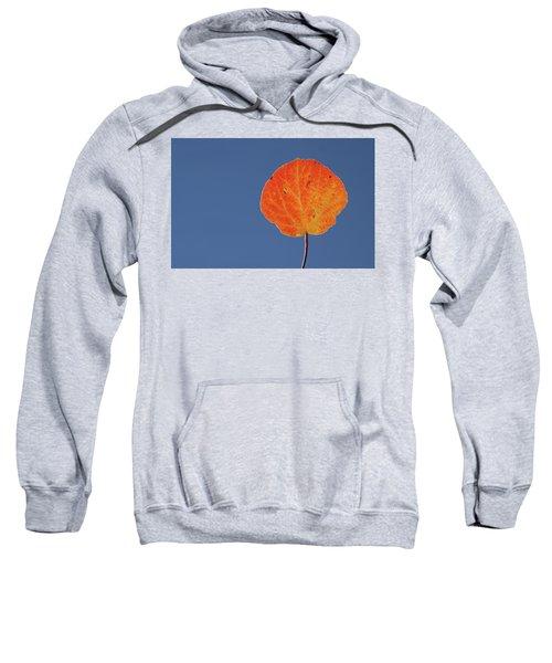 Aspen Leaf 1 Sweatshirt