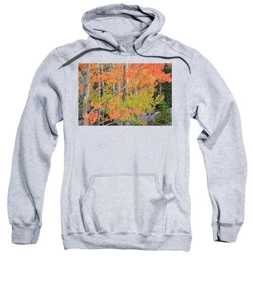 Sweatshirt featuring the photograph Aspen Stoplight by David Chandler
