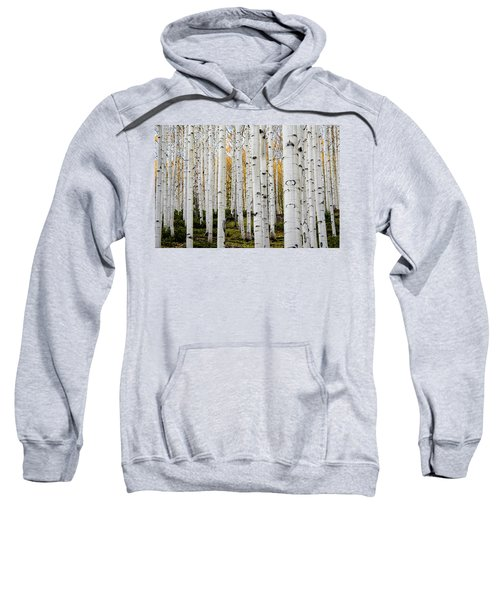Sweatshirt featuring the photograph Aspens And Gold by Stephen Holst