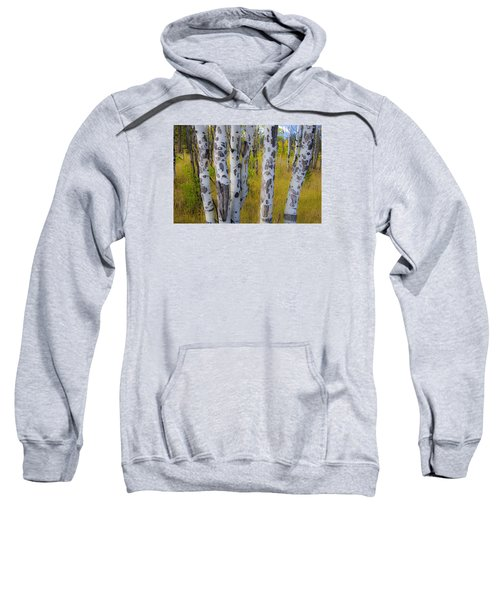 Sweatshirt featuring the photograph Aspens by Gary Lengyel