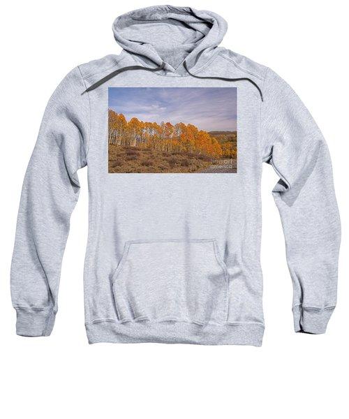 Aspens In Utah Sweatshirt
