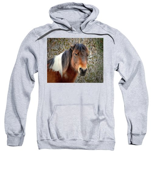 Assateague Island Pony Patricia Irene Sweatshirt
